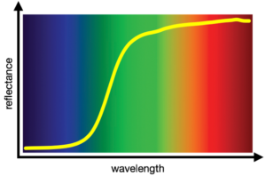 Fig. 1: yellow material reflectance